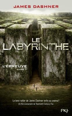 8. Le Labyrinthe Tome 1